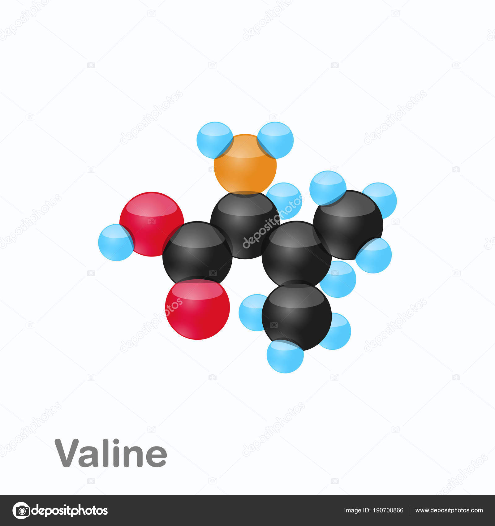 valine aminozuur