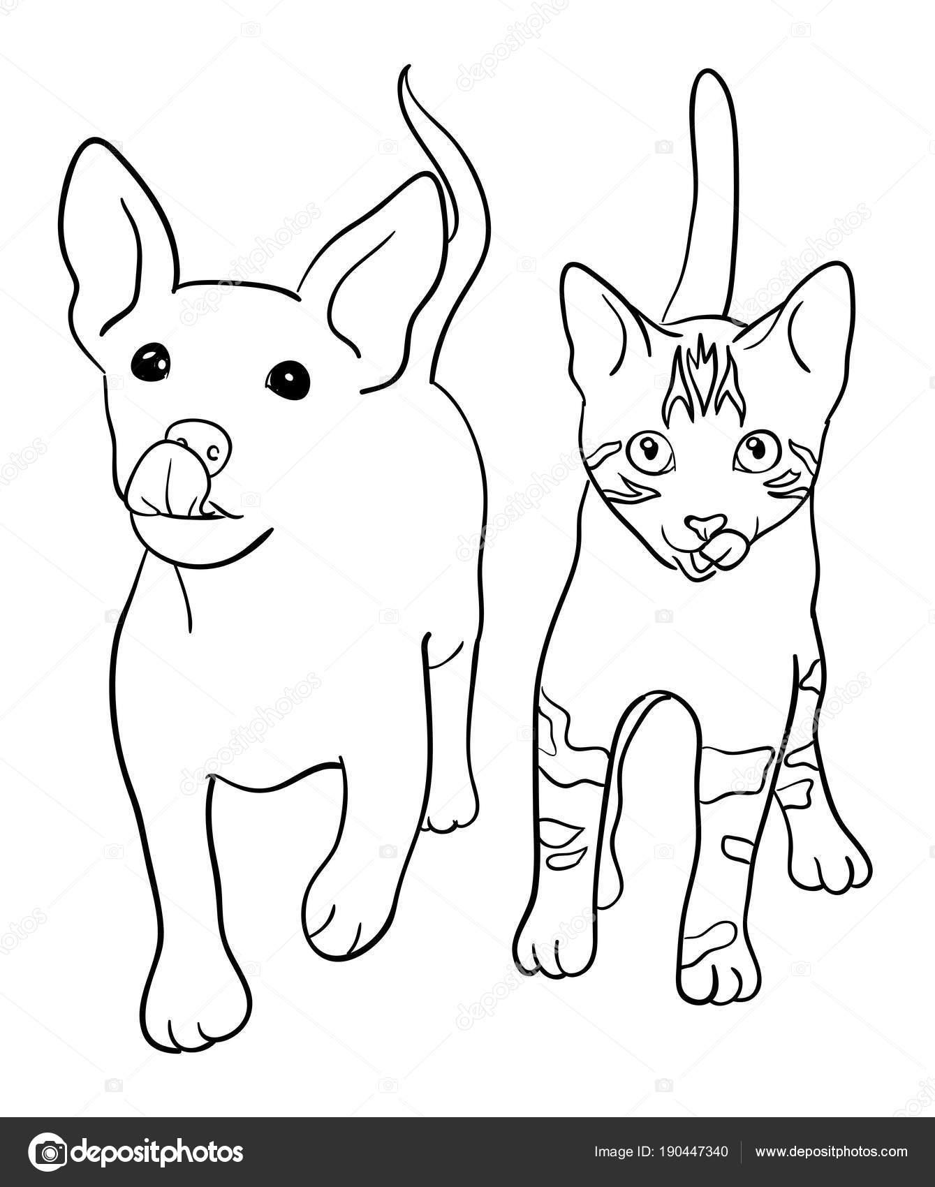 Perros Gatos Arte Línea Vector Ilustración Buen Uso Símbolo Logo ...