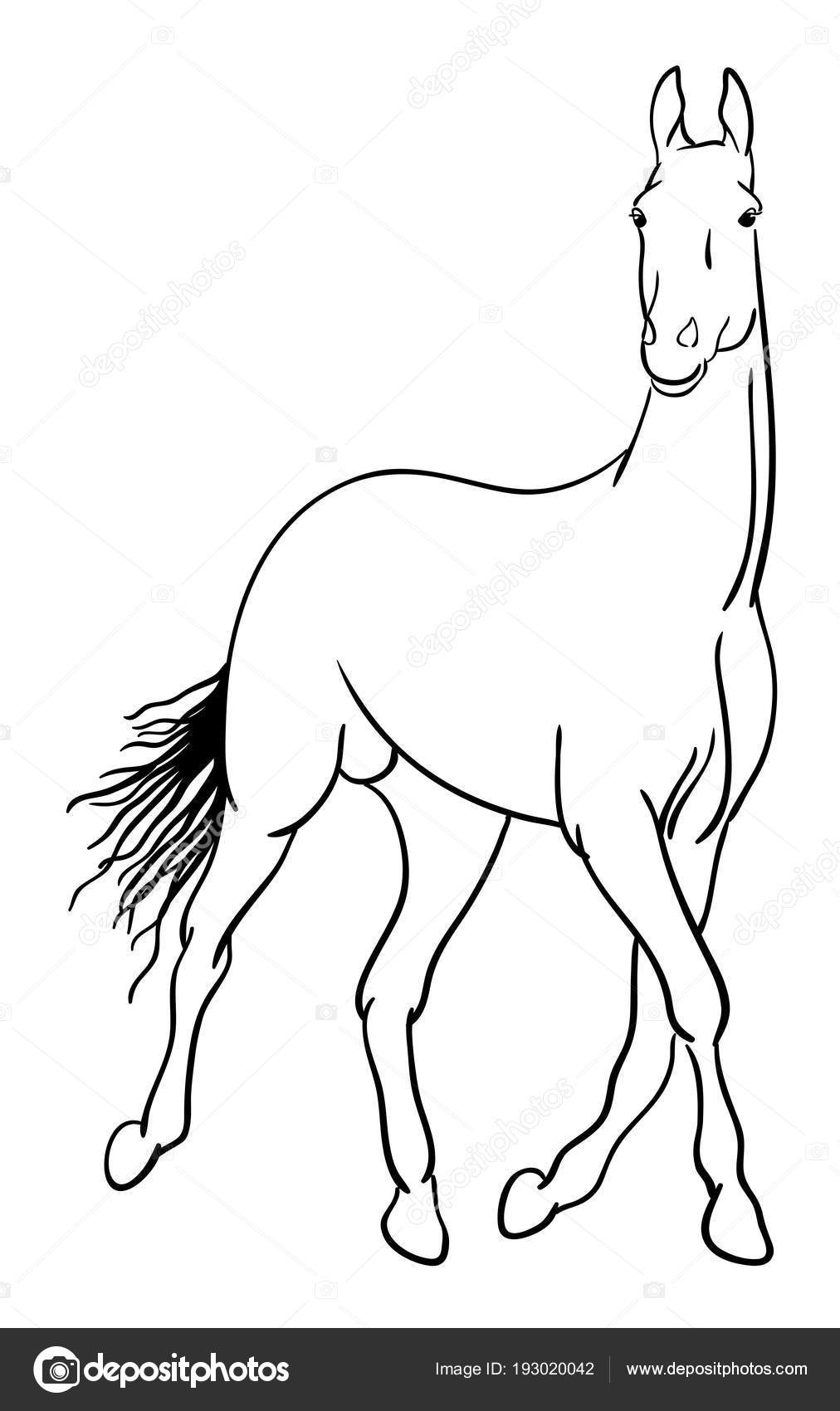 Horse Line Art Good Use Symbol Logo Web Icon Mascot Stock Vector C Fennywiryani Gmail Com 193020042