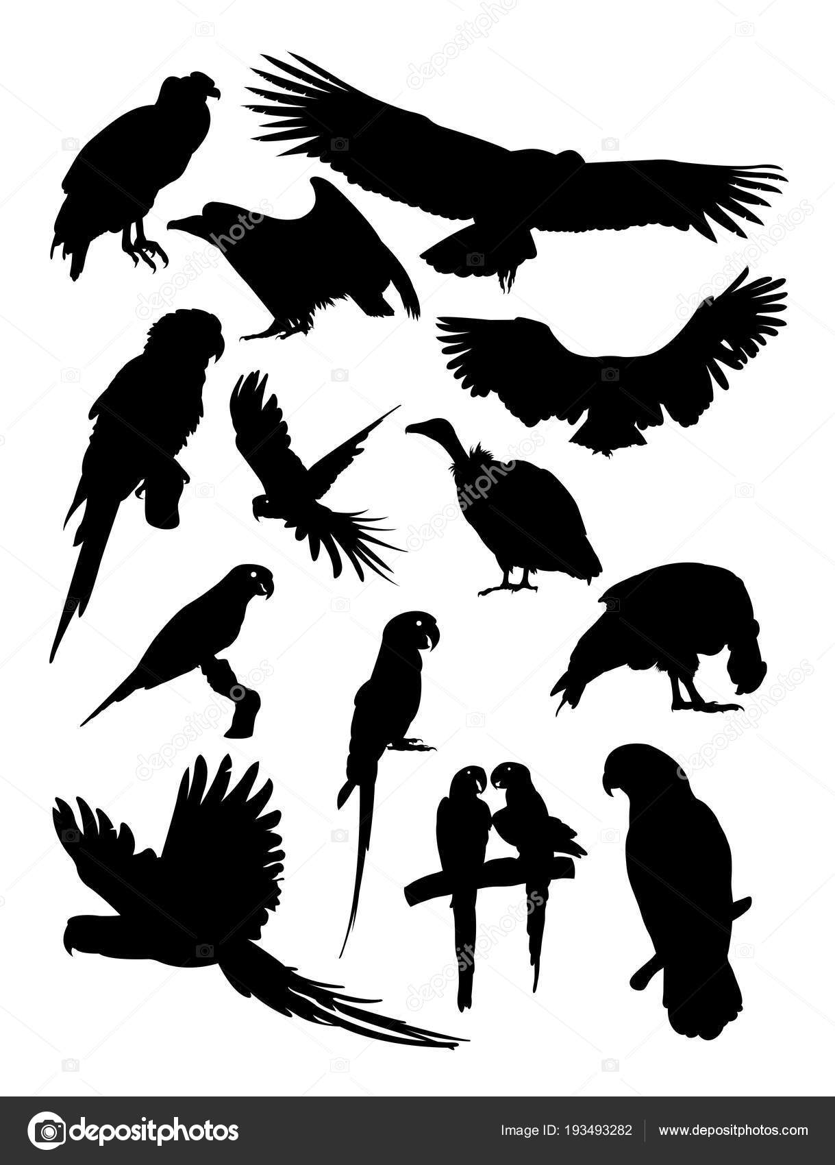 Condor Parrot Silhouette Good Use Symbol Logo Web Icon