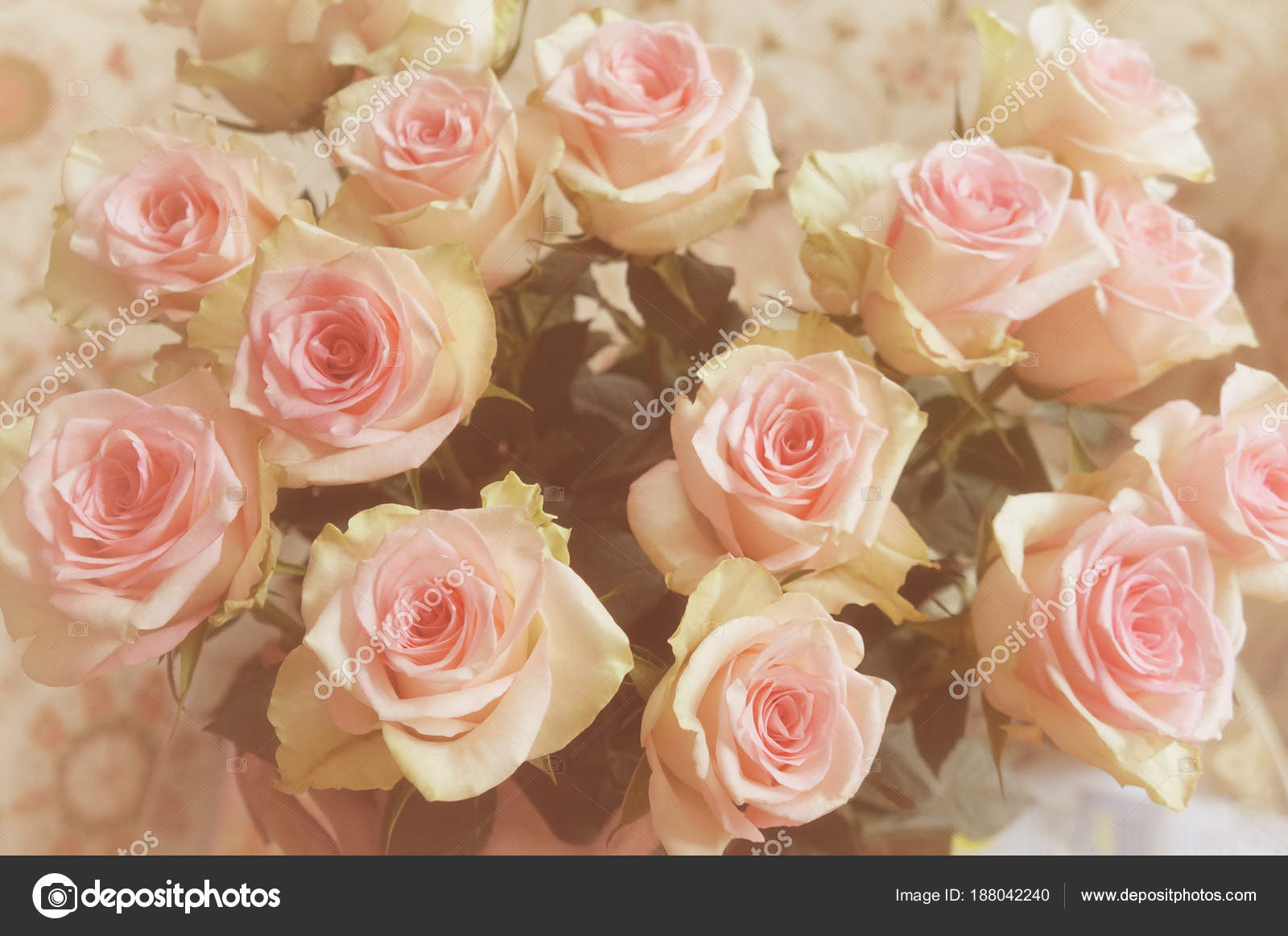 Natural Beautiful Rose Bouquet Flowers Background Stock Photo