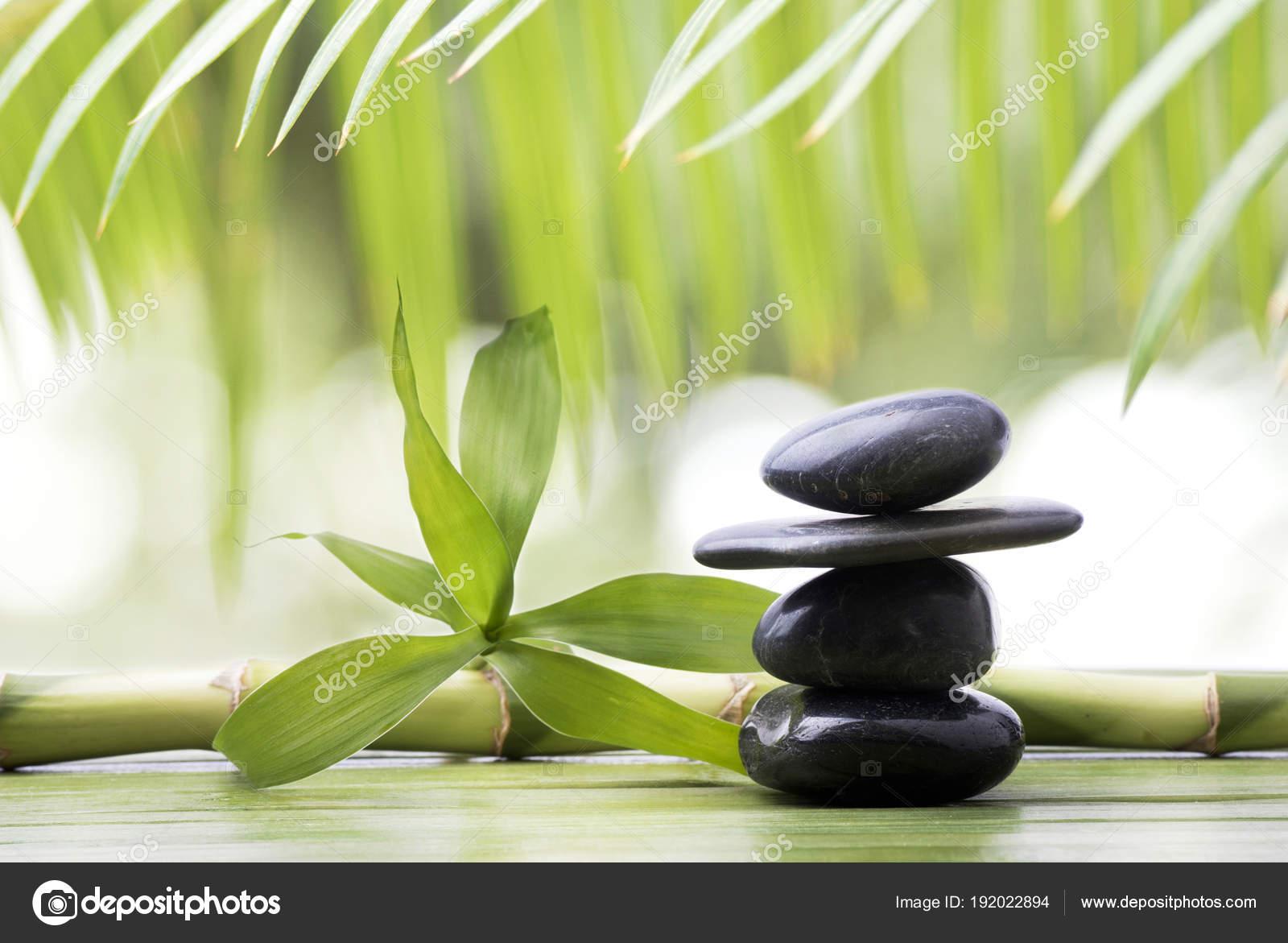 Wellnesslandschaft Mit Schwarzen Steinen Und Bambus Stockfoto