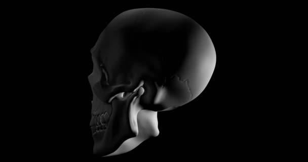 Cráneo humano girando sobre fondo negro — Vídeo de stock © ianm36 ...