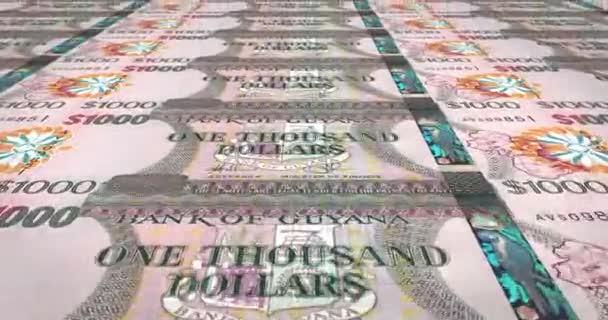 Banknoten von eintausend Guyana Dollar von Guyana, Bargeld, Schleife