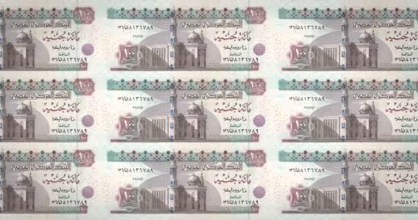 Les Billets De Cent La Livre Egyptienne De L Egypte Laminage Argent Comptant En Boucle