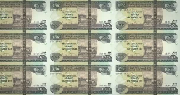 Banknotes of one hundred Ethiopian birr of Ethiopia rolling, cash money, loop