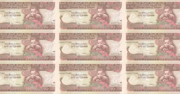 Banknotes of ten Ethiopian birr of Ethiopia rolling, cash money, loop