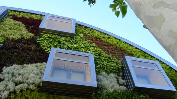 Panoramatické fasády moderní budovy s okny a vegetace zdí. Zelené prostředí