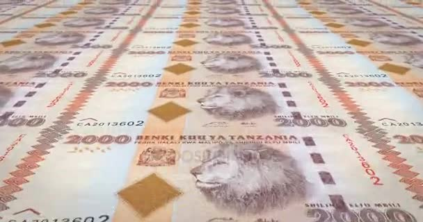 Banknotes Two Thousand Tanzanian Shilling Tanzania Cash Money Loop