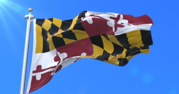 Flag of american state of Maryland, region of the United States - loop