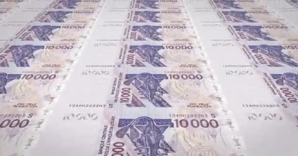 Banknotes of ten thousand West African CFA francs of Africa, cash money, loop