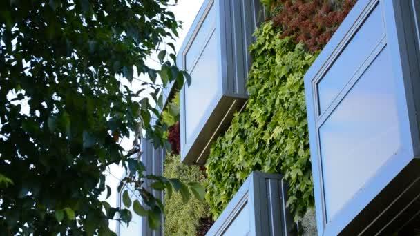 Okna v moderní budově s vertikální zahrady