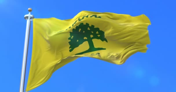 Oakland city flag, city of USA or United States of America, waving at wind in blue sky, slow - loop