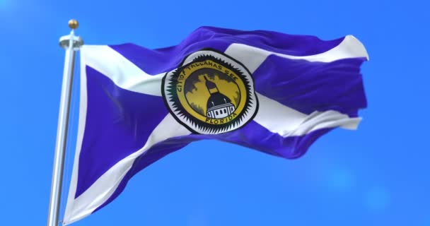 Flag of Tallahassee city, city of Florida in United States of America - loop