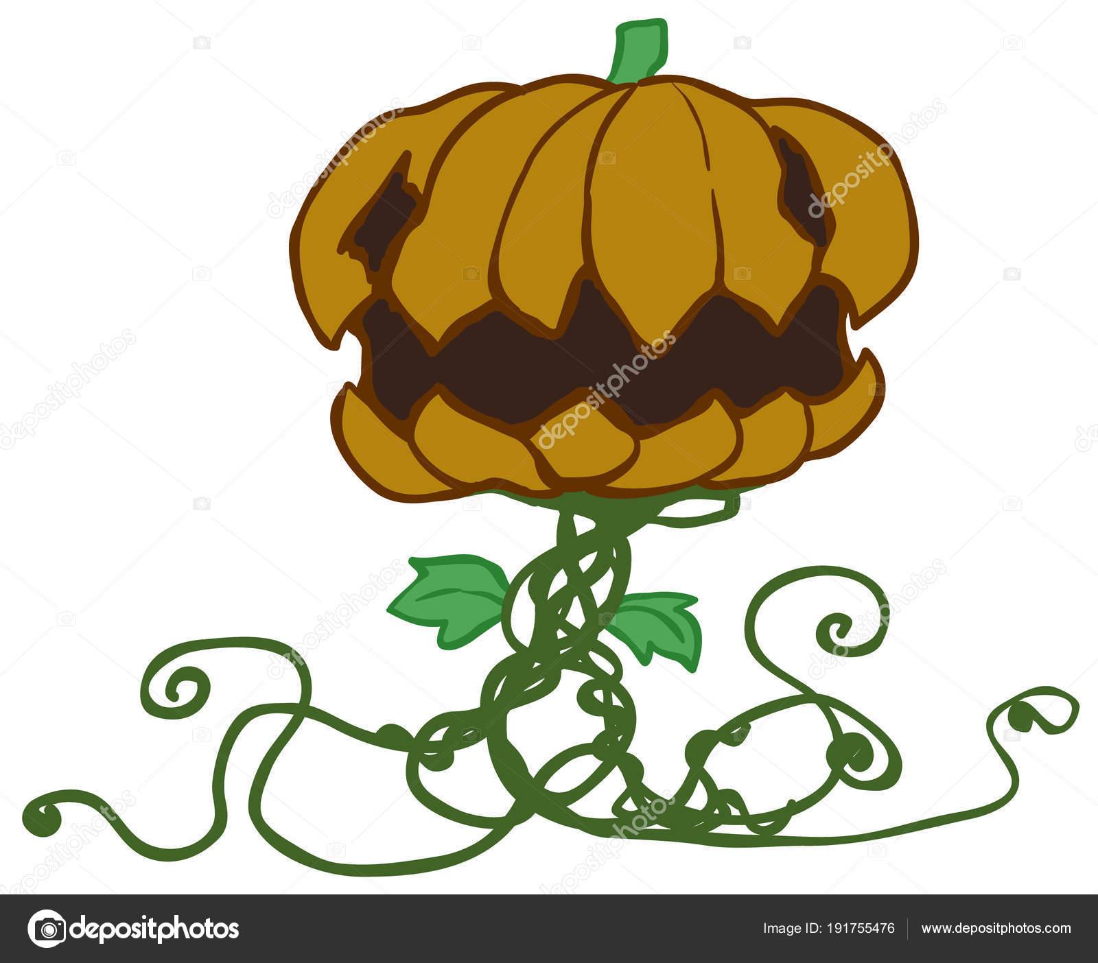 Pianta Di Zucca Di Halloween.Pianta Di Zucca Di Halloween Del Fumetto Vettoriali Stock C Higyou