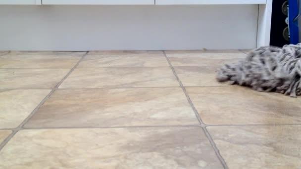 Vytírání podlahy nízký úhel