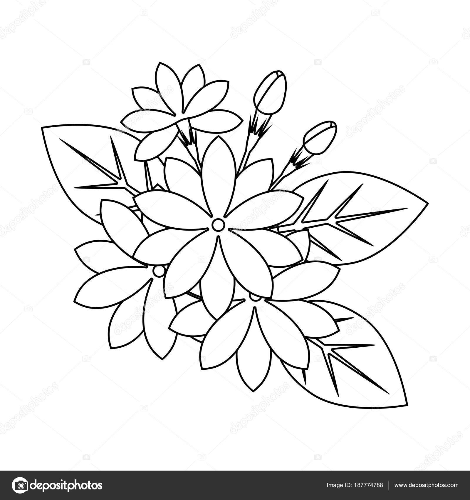 çiçek Boyama Kitabı Stok Vektör Flowersmile 187774788