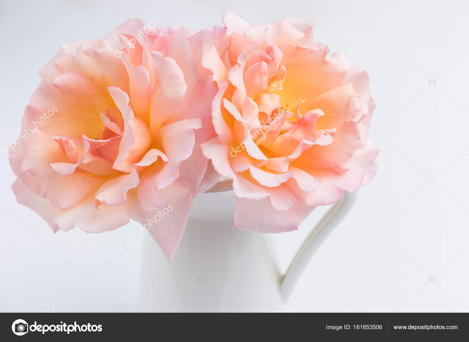 Fresh Bunch Of Pink Roses Flowers In The Jar Stock Photo