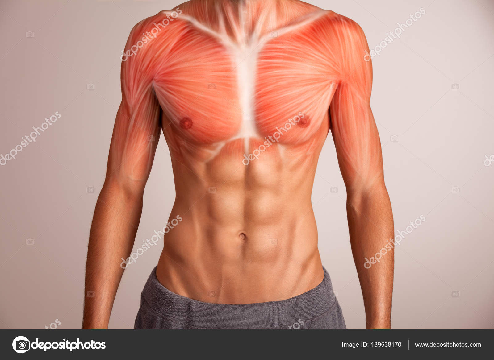 Menschlichen Brustmuskel — Stockfoto © artstudio_pro #139538170