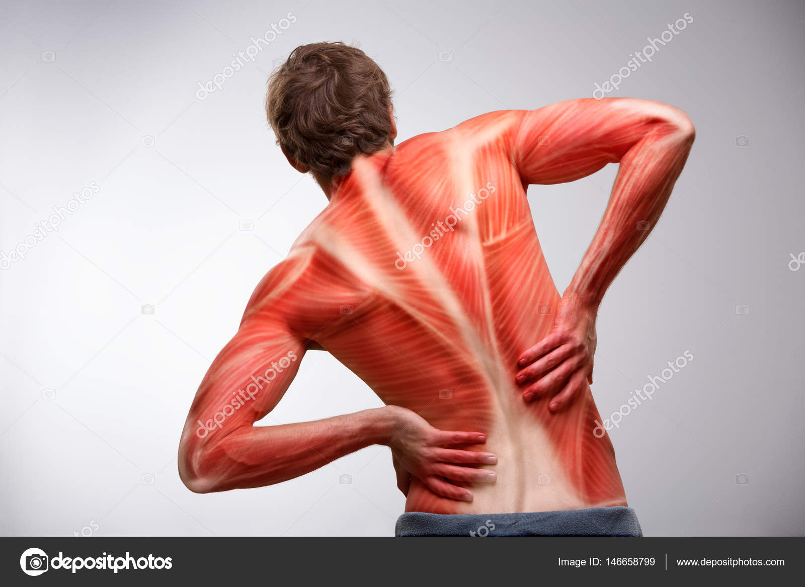 Back pain. Back view of athlete man torso with muscle structure ...