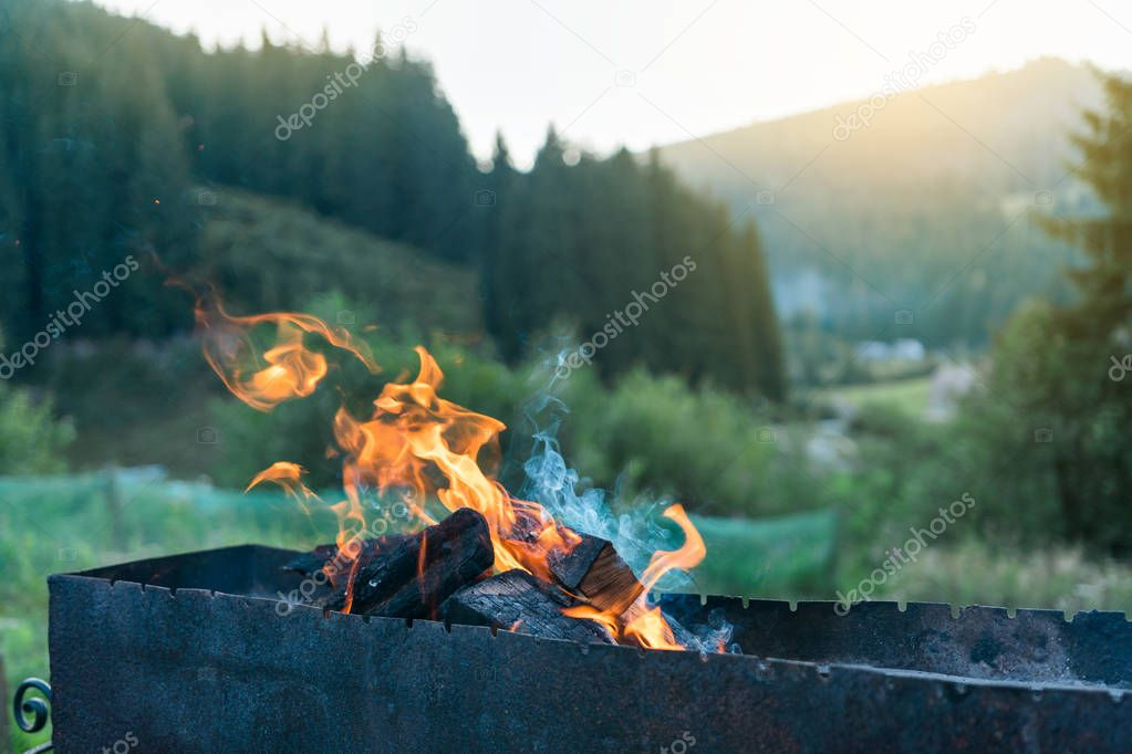 close-up of burning fire outdoor in sunset time with green forest on background
