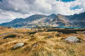 Valle dei cinque laghi in Alti Tatra, Polonia