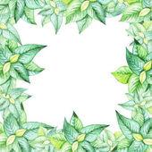 schöne Aquarellmalerei des Frühlings grüne Blätter Rahmenmuster