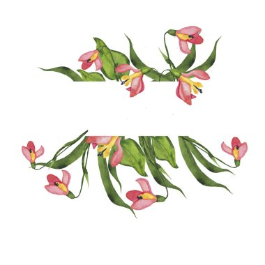 watercolor painting of wild pink flowers seamless pattern on white background