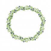 Rajzfilm olajfa ágakat keret elszigetelt fehér background. Kézzel rajzolt akvarell illusztráció