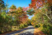 Strada tortuosa attraverso gli alberi di autunno nel New England