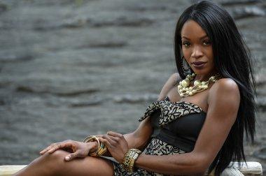 Beauty portrait of a pretty African American girl.
