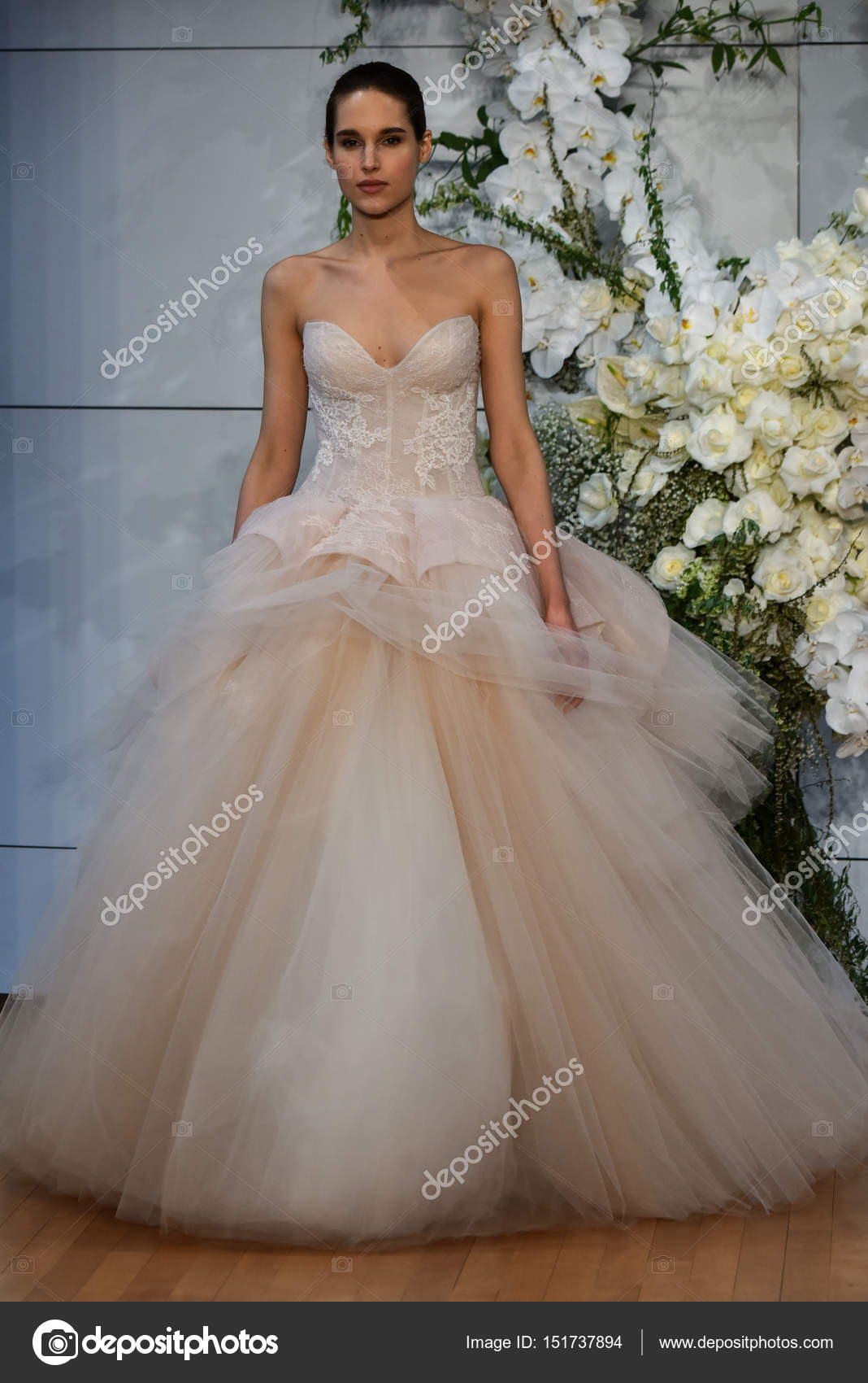 Show de monique lhuillier bridal fotografia de stock editorial show de monique lhuillier bridal fotografia de stock junglespirit Images