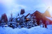 Fotografie Pohádkový dům v lese uprostřed zasněžené jedle