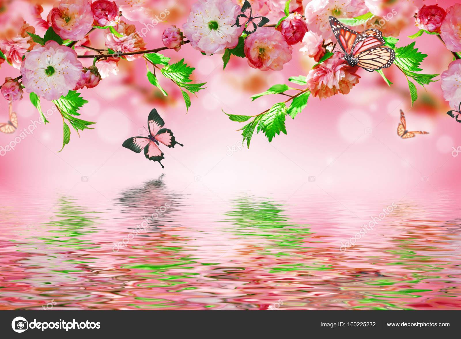 Sfondo Di Fiori Con Incredibile Primavera Sakura Foto Stock