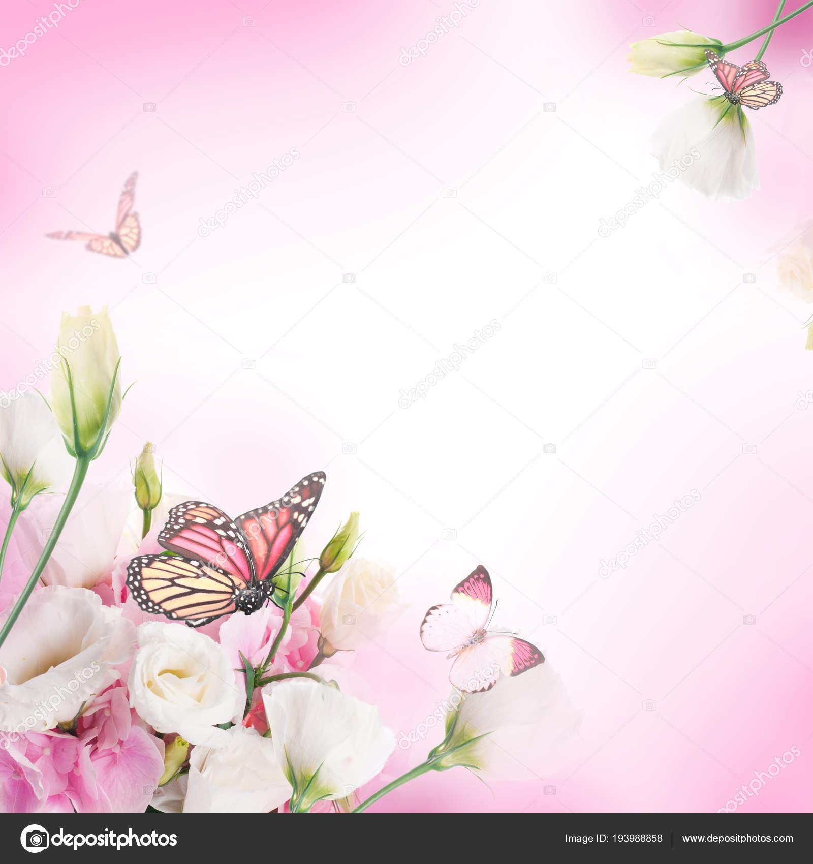Composizione Floreale Bianco Rosa Eustoma Farfalle Che Volano Sfondo