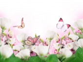 Photo A bouquet of amazing eustoma on a background of a blue sky with colorful butterflies. Flowers.
