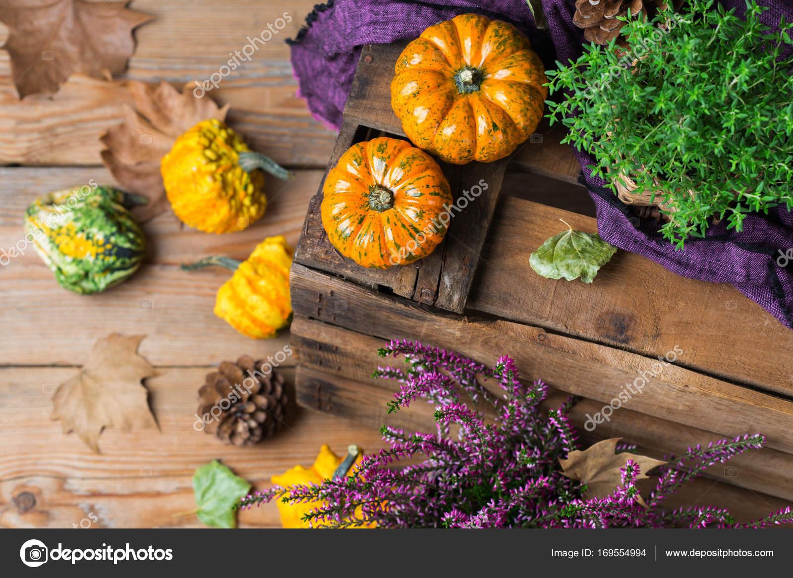 Herbst Herbst Ernte Hintergrund Mit Danksagung Dekorative Festliche