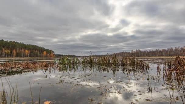 Nízké mraky nad bažinatých rybník