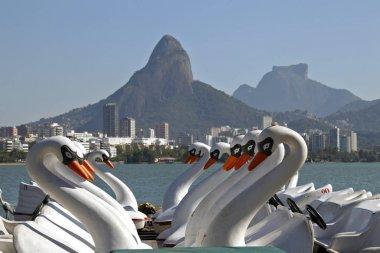 Swan boats at the beach of Rio de Janeiro