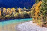 Photo Beautiful waterfall in autumn