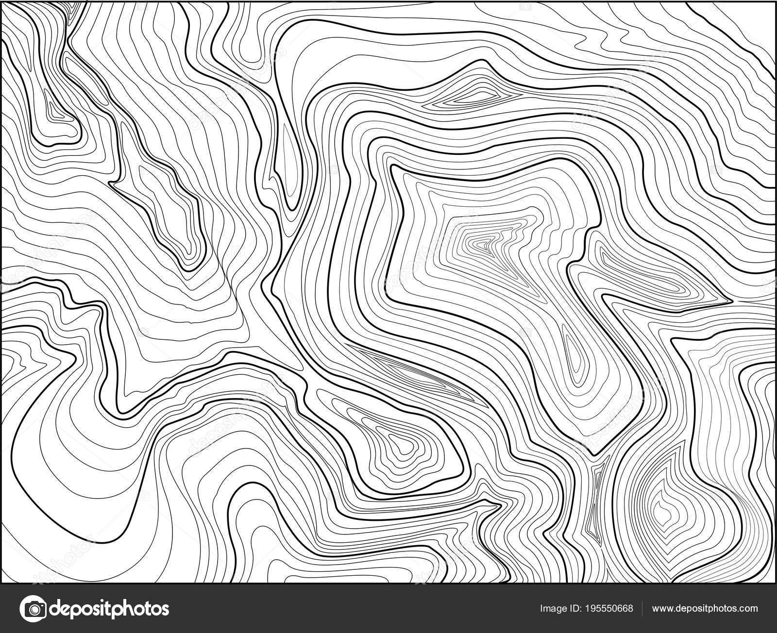 Topographic Map Vector Free.Topographic Map Contour Background Map Grid Stock Vector