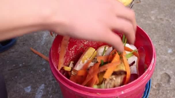 Küche Kompost Eimer Mülltrennung Küchenabfälle Recyceln — Stockvideo ...