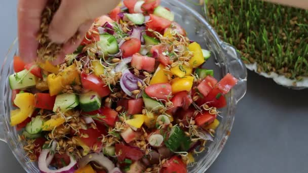 Healthy breakfast salad with vegetables and microgreen. Vegetarian dieting healthy food concept