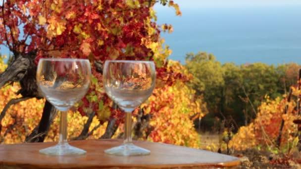 Brýle na pozadí podzimní vinice. Pobřeží vinice a vinařství
