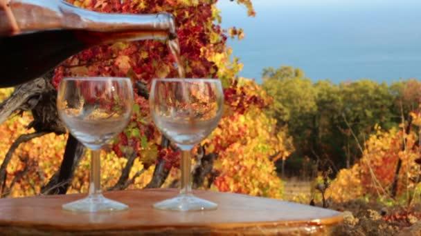 Víno z láhve se nalije do sklenice na pozadí vinice. Podzim ve vinicích podél pobřeží