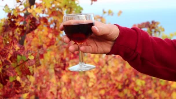 A termelő egy pohár bor társaságában. Őszi borkóstolók. A Szőlőbirtok és Pincészet