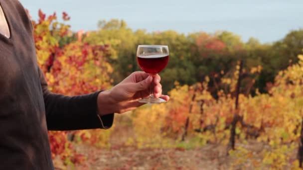 Vinař u sklenky vína. Podzim ve vinicích. Ochutnávka vín