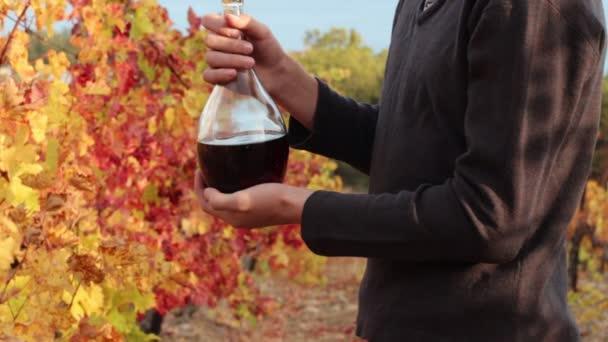 Borkészítés. Egy vigneron, egy kancsó bort. Ősz a kertben. Borkóstolás