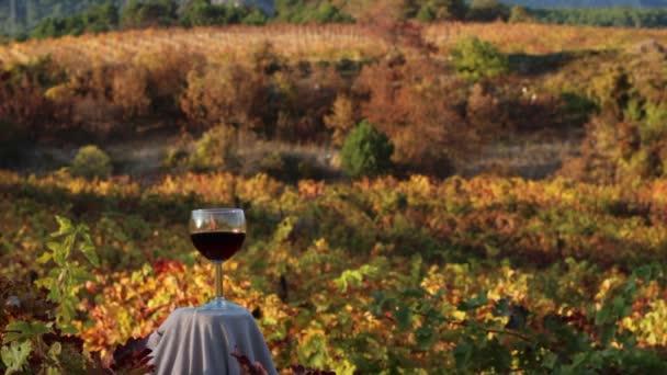 Sklenice červeného vína. Vína z podzimu
