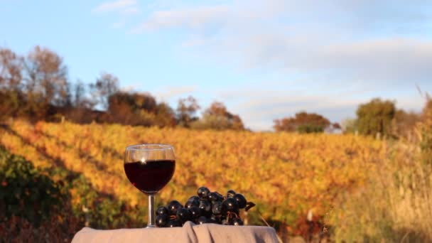 A glass of red wine. Vineyards in autumn